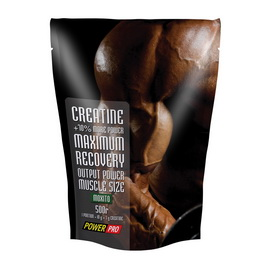 Creatine Maximum Recovery (500 g)
