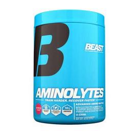 Aminolytes (415 g)