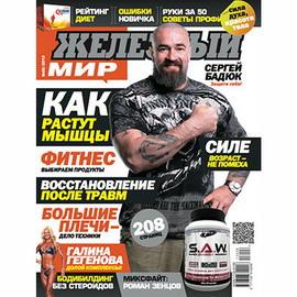 Журнал «Железный Мир» № 06/2013