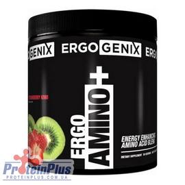 ErgoAmino+ (380 g)