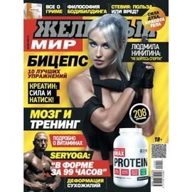 Журнал «Железный Мир» № 09/2015
