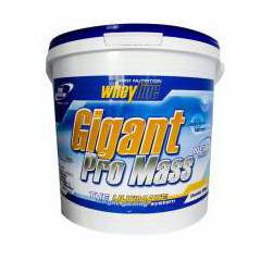Whey Line GIGANT PRO MASS (5000 g)