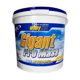 Gigant Pro Mass (5 kg)