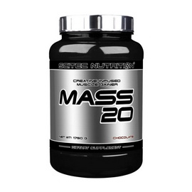 Mass 20 (4 kg)