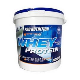 Whey Protein (4000 g)