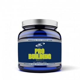 Pro Building (500 g)