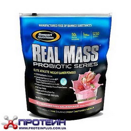 Real Mass Probiotic (2,7 kg)