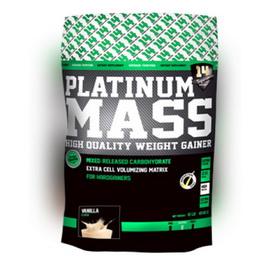 Platinum Mass (4,54 kg)