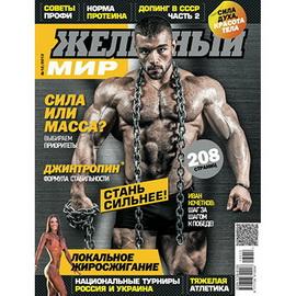 Журнал «Железный Мир» № 12/2013