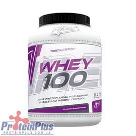 Whey 100 (600 g)