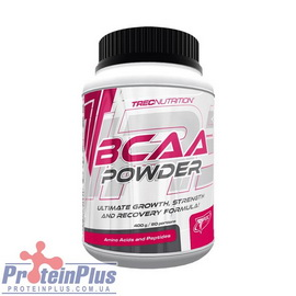 BCAA Powder (400 g)