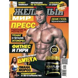 Журнал «Железный Мир» № 08/2015