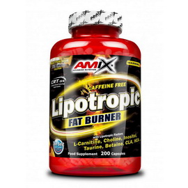 Lipotropic Fat Burner (200 caps)