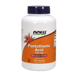 Pantothenic Acid 500 mg (250 caps)