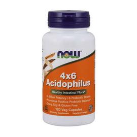 4x6 Acidophilus (120 veg caps)