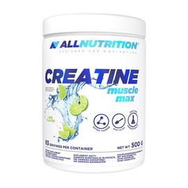 Creatine Muscle Max (500 g)