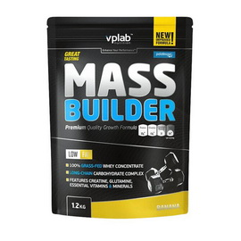 Mass Builder (1,2 kg)