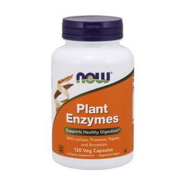 Plant Enzymes (120 veg caps)