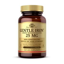Gentle Iron 25 mg (Iron Bisglycinate) (90 veg caps)