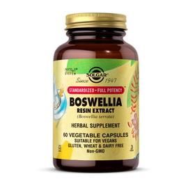 Boswellia Resin Extract (60 veg caps)