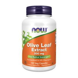 Olive Leaf Extract 500 mg (120 veg caps)