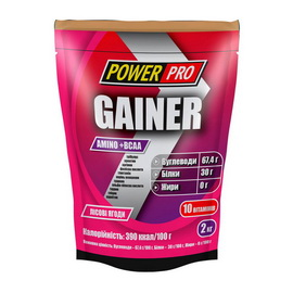 Gainer Power Pro (2 kg)