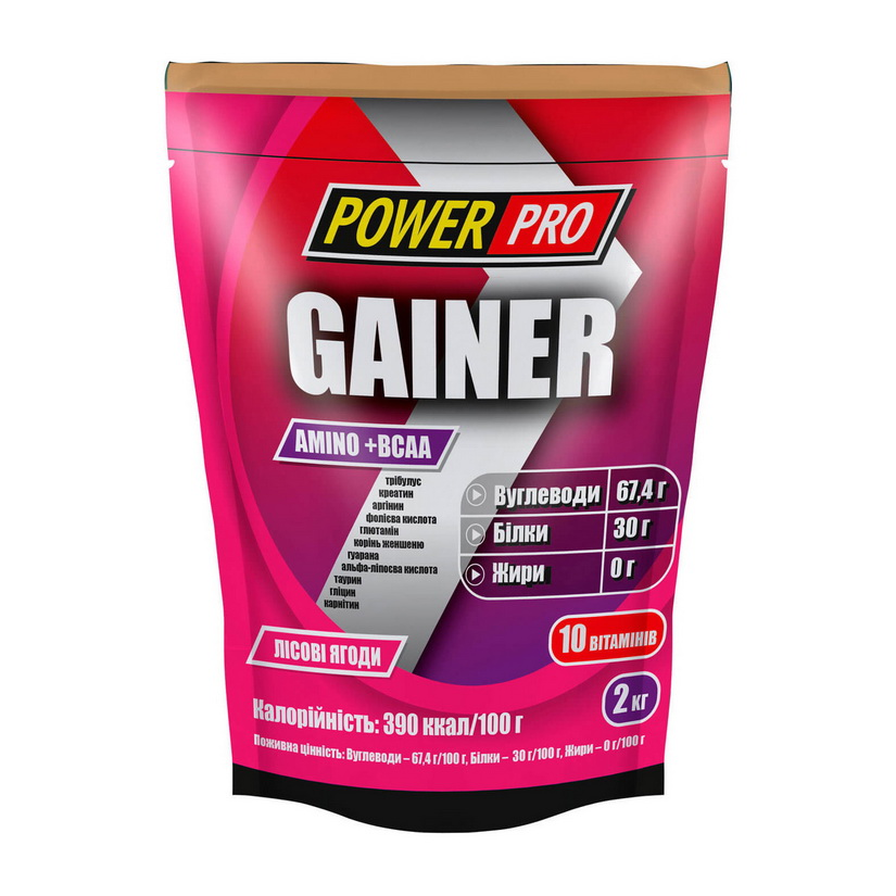 Gainer Power Pro (2 kg)