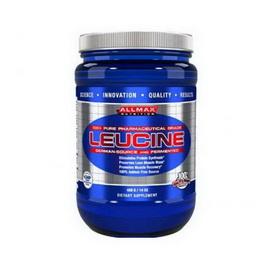 Leucine (400 g)