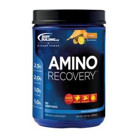 Amino Recovery (498g)