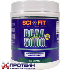 BCAA powder 5000 (300 g)