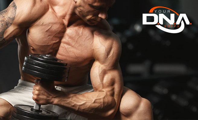 DNA Your Supps