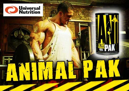 Banner Animal Pak