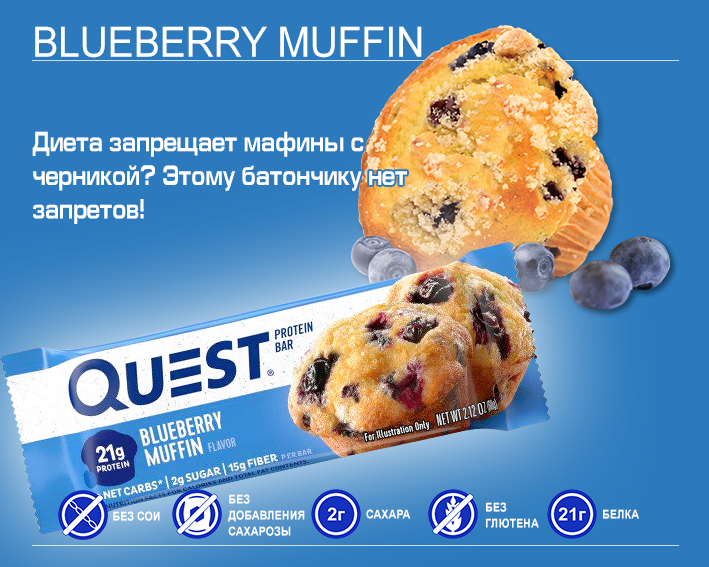 Quest Bar Blueberry Muffin