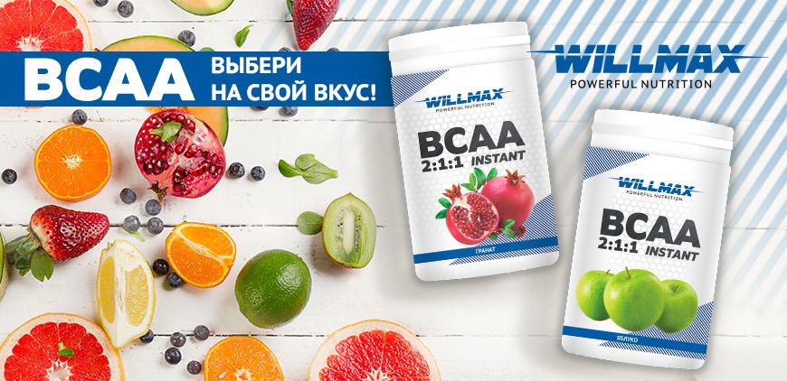 Баннер WILLMAX BCAA 2:1:1 Instant