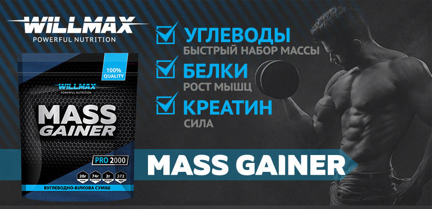Баннер WILLMAX Mass Gainer